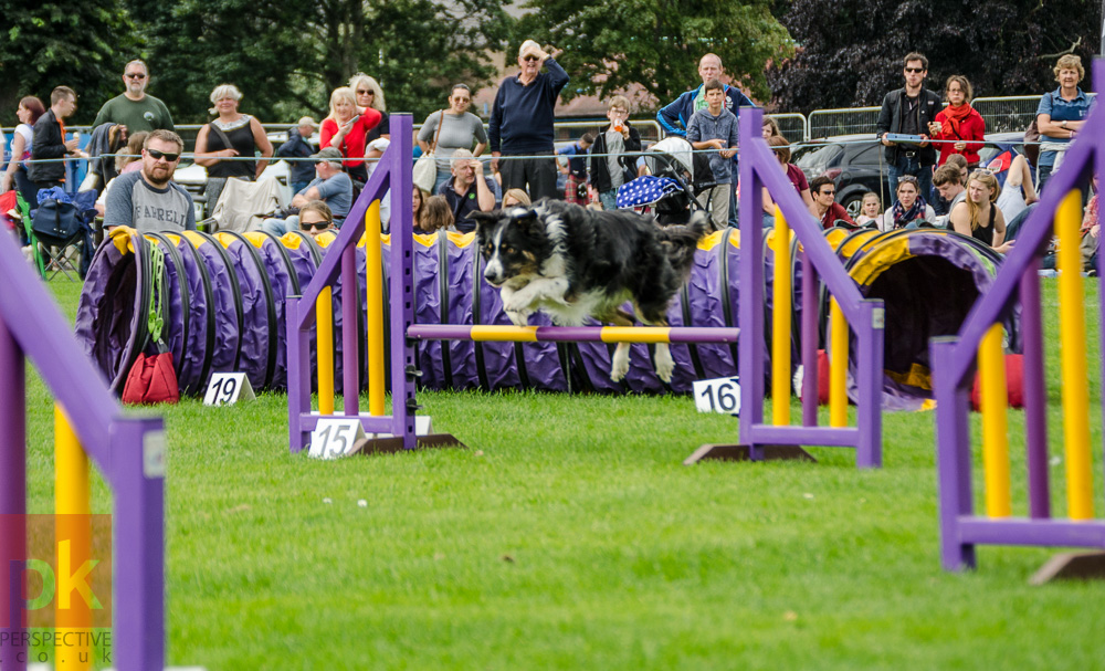 2016 Perth Highland Games Gallery